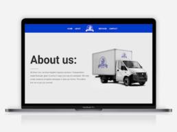 website design silver lion about